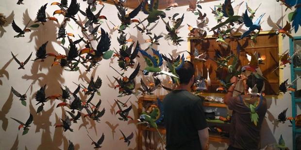 Turismo Rural em Silveiras